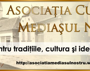 Retrospectiva 2014 : Asociatia Culturala Mediasul Nostru