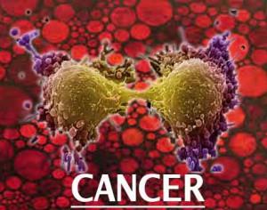 Terapii complementare: Final conferinta cancer