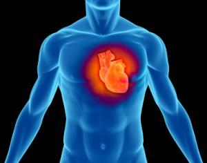 Terapii complementare: Bolile cardiovasculare