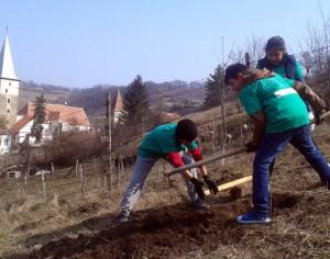 Proiectul Livada Scolara la Mosna
