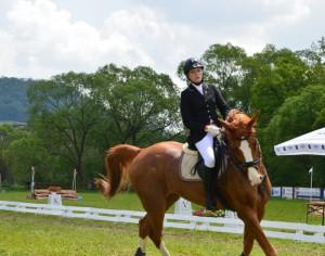 Transylvania Horse Show, editia 2016