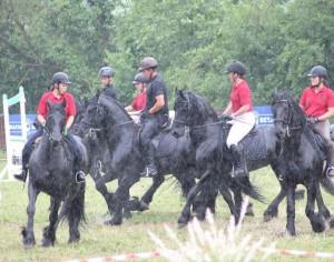 Transylvania Horse Show 2016: Friesian Show (video)